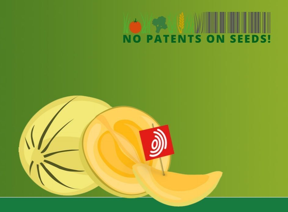 End the legal chaos at the European Patent Office!