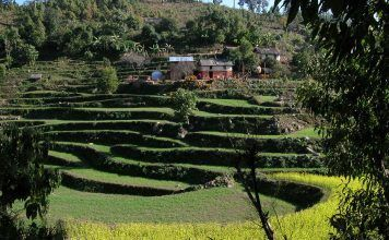organic farming Sustainable agriculture for people and planet – for example at a farm in Nepal. (Photo: Helvetas) agricultura ecológica sostenibilidad