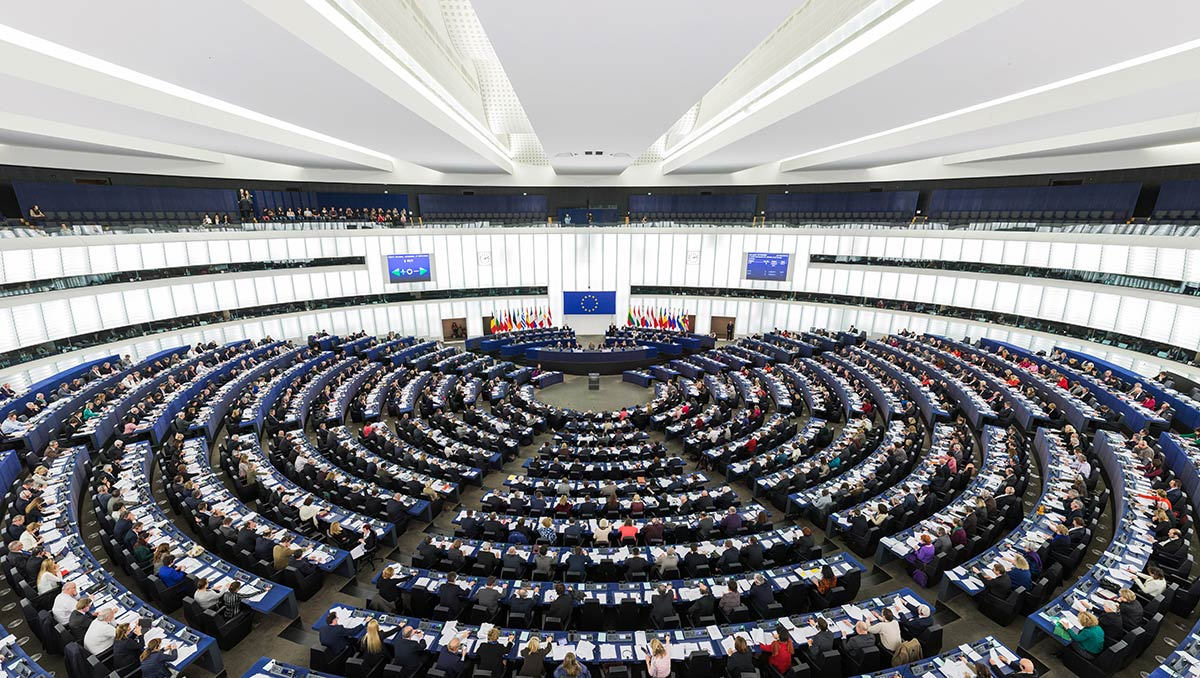 Civil society launches a campaign calling on next Members of the European Parliament to make Europe sustainable and fair by 2024