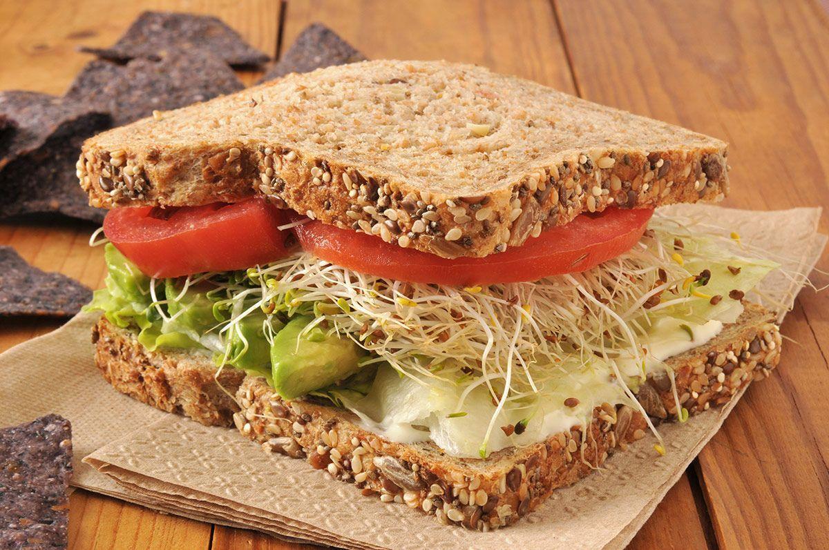 Brotes germinados. El milagro de la vida