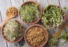 Ayuda a tu digestión con enzimas