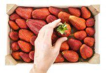 ¿En qué me tengo que fijar al escoger las frutas? En què m'he de fixar en escollir les fruites?