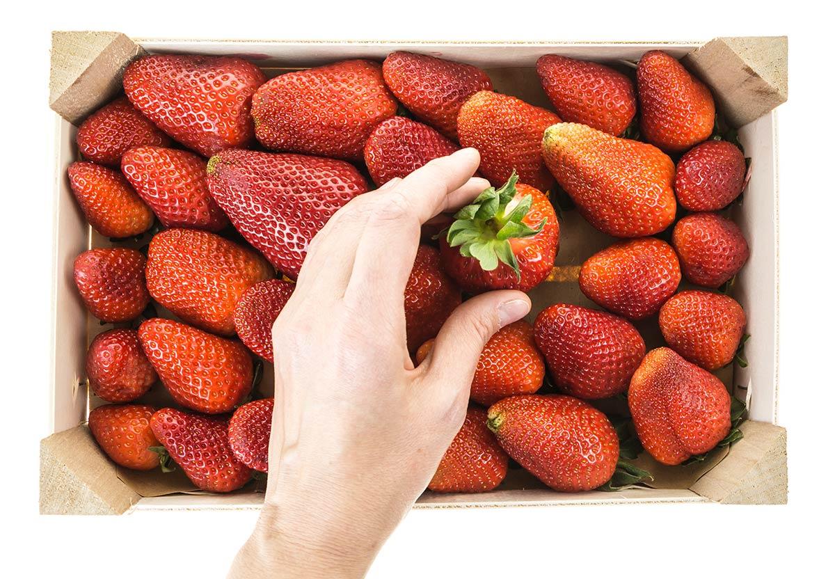 ¿En qué me tengo que fijar al escoger las frutas?