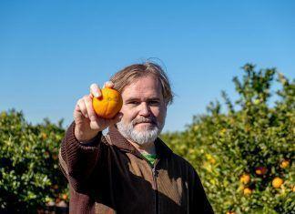 Alimentación ecológica: ¿más cara que la convencional? alimentació ecològica agricultura ecológica costes reales producción convencional