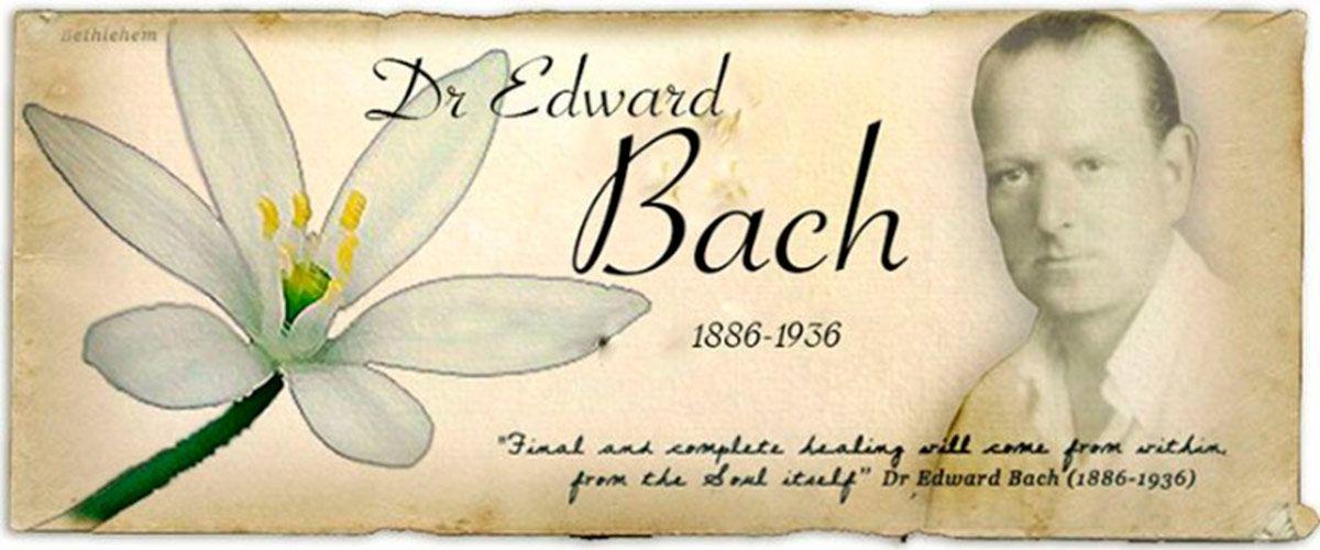 Las Flores de Bach. Tomar conciencia para poder sanar