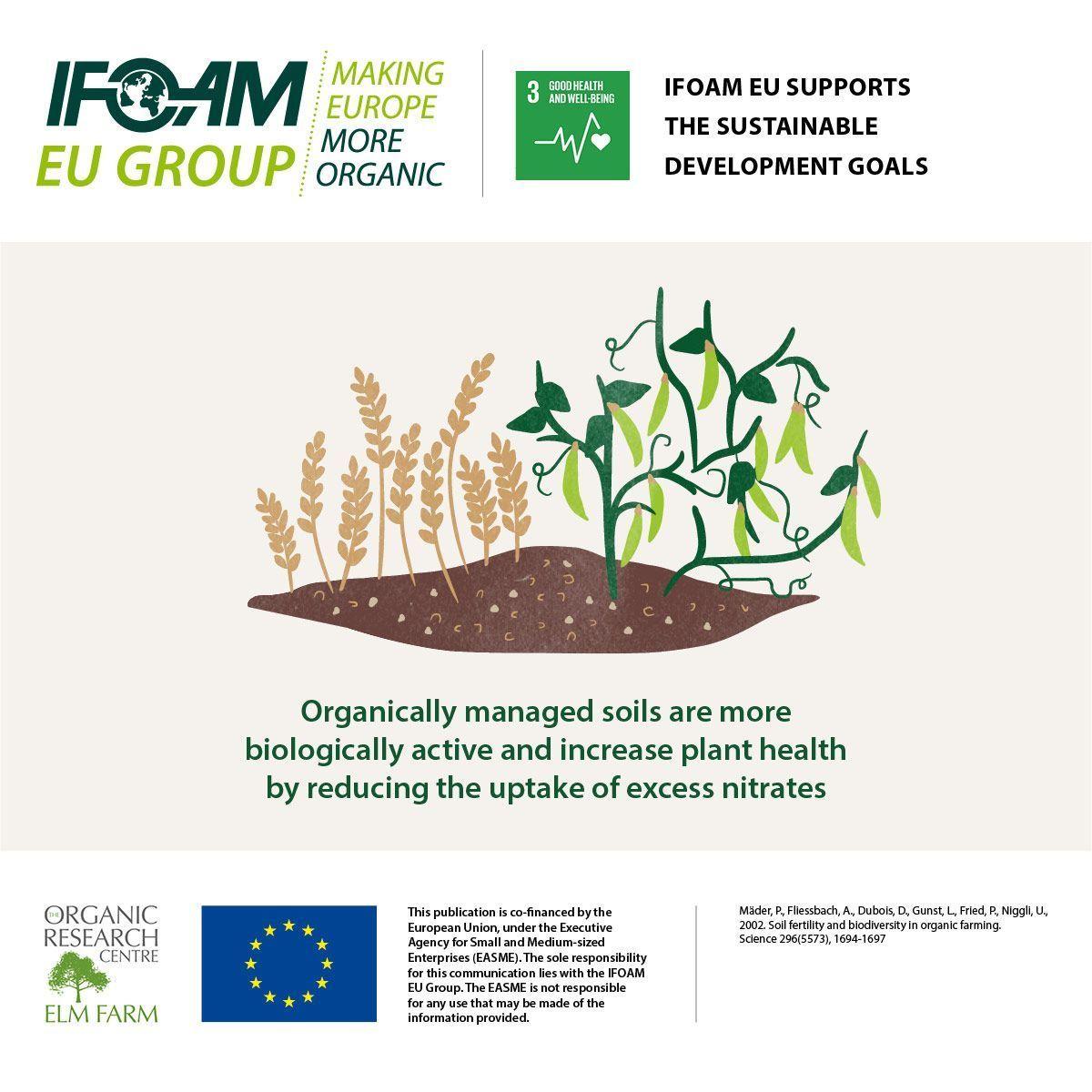IFOAM EU: Luchando por la adopción de sistemas ecológicos, sociales y económicos en Europa basados en principios orgánicos