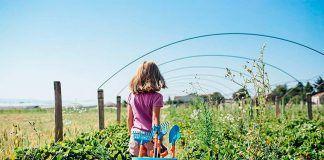 El Premio Nacional Huertos Educativos Ecológicos alcanza casi 700 proyectos desde su primera edición
