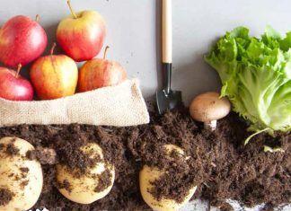 L'alimentació ecològica pot contribuir a complir els ODS