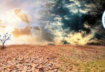 Más de 300 organizaciones se suman a la Huelga Mundial por el Clima biocultura valencia 2019