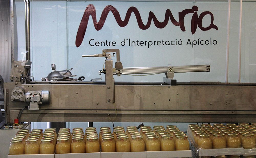 miel muria rafel muria centro de interpretación apícola