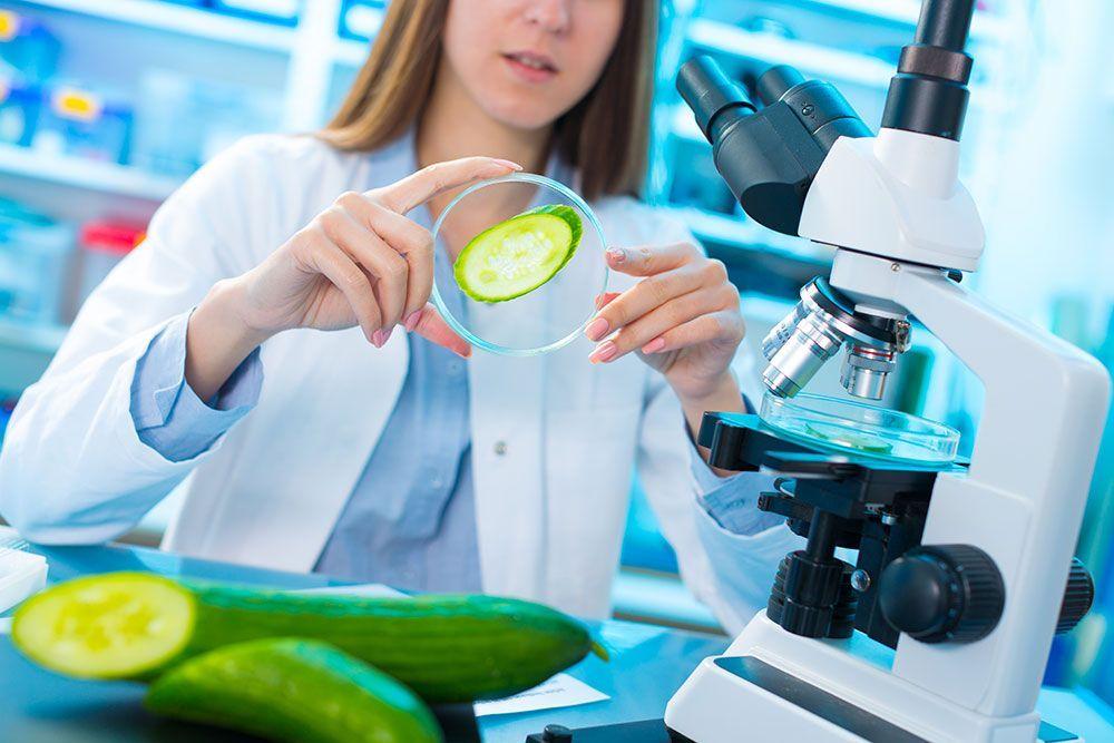 Bromatología, la ciencia de los alimentos