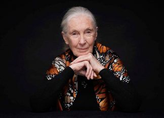 BIOFACH and VIVANESS: Jane Goodall opens the next round