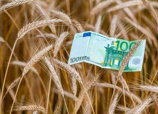 Los grandes capitales desembarcan en el sector bio