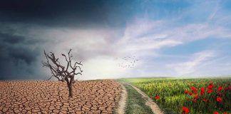 Canvi climàtic i producció agrària en tercers països