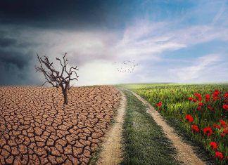 Cambio climático y producción agraria en terceros países
