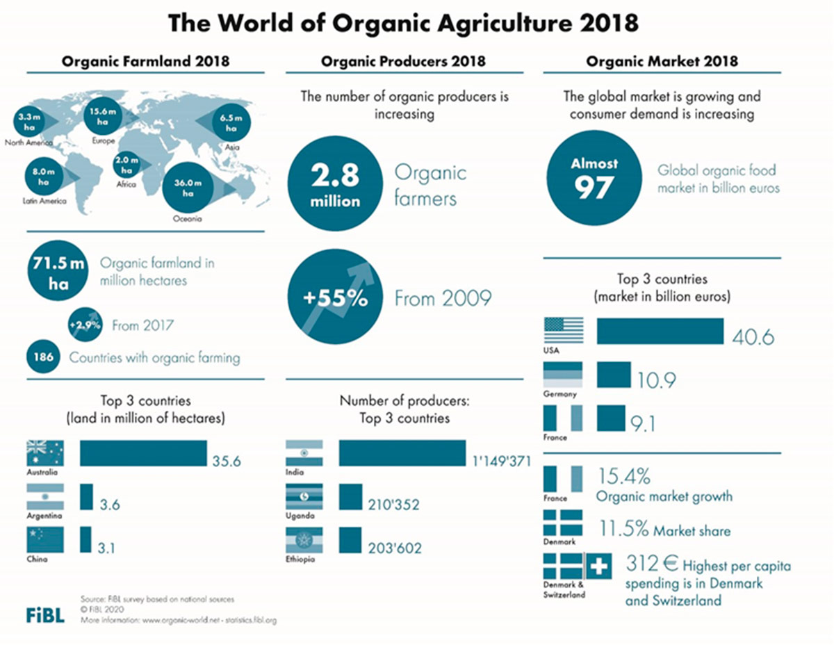 Global organic area continues to grow