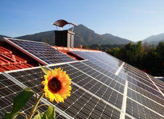 Pacto Verde Europeo: apuesta por el clima y el medio ambiente