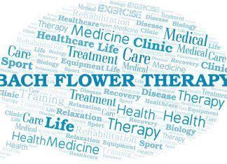 Teràpia Floral, més que remeis: una via cap al desenvolupament interior