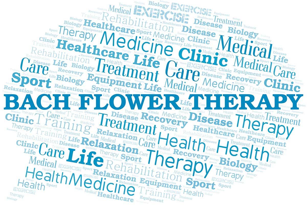 Terapia Floral, más que remedios: una vía hacia el desarrollo interior