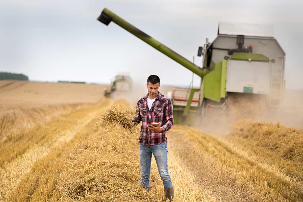 Ingenieros agrónomos y veterinarios al servicio de los lobbies de la alimentación convencional