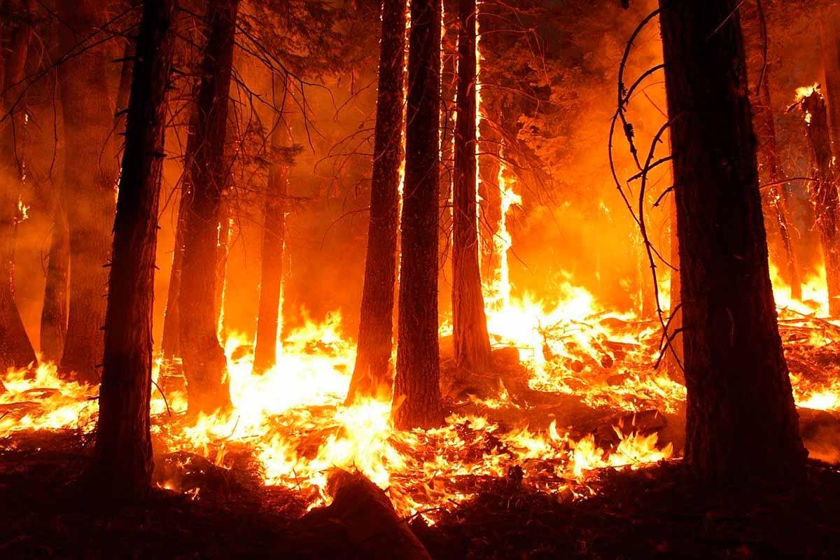España: menos incendios pero más catastróficos