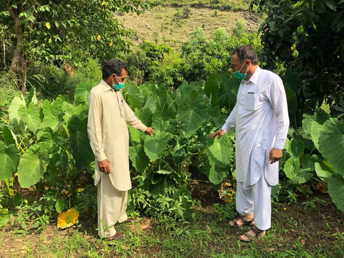 Muhammad Riaz: Why Compost is my Kind of Gold!