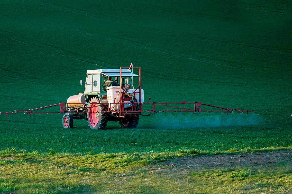 Una dieta basada en alimentos eco puede reducir en un 70% los pesticidas que tienes en el organismo
