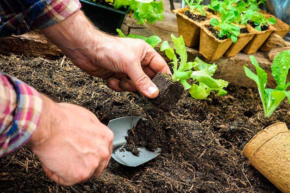 agricultura ecològica i biodiversitat