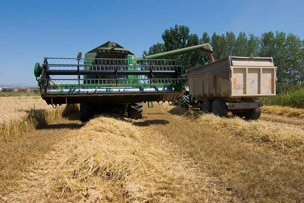 luis planas alimentación ecológica Reglamento Europeo de Producción Ecológica