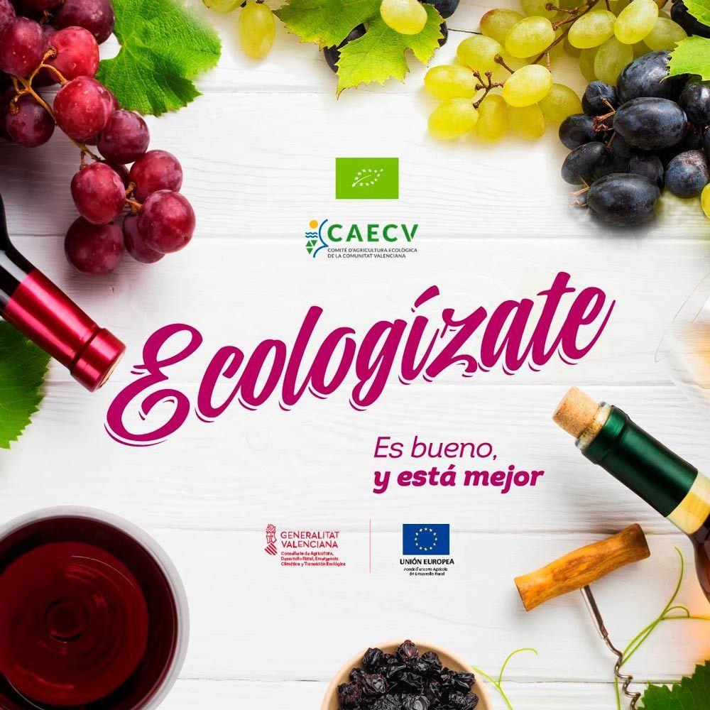 Concurso de vinos ecológicos de la Comunitat Valenciana