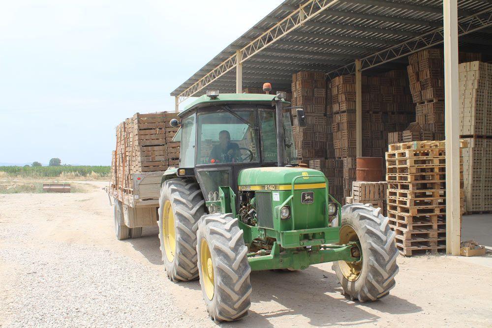 Agricultura ecológica y convencional