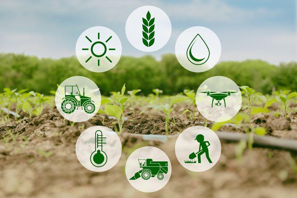 polítiques de producció ecològica