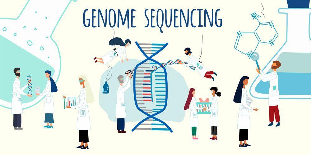 Los vegetales que se puedan producir con la CRISPR/Cas serán genéticamente iguales a los originales