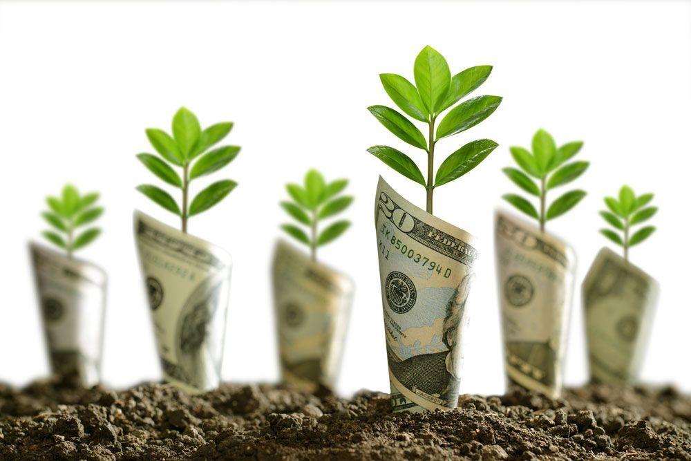 La Fundació Gates inverteix poc en agroecologia