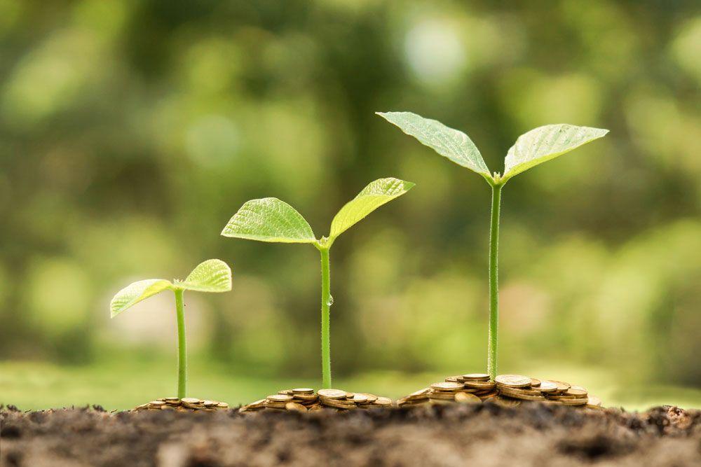 Un año para cambiar el futuro: sostenibilidad y comercio justo